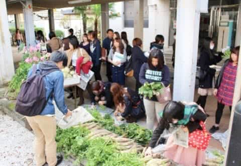 写真:無料野菜市場に多くの学生が集まっている風景
